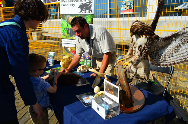 Animals and wilderness preservation booth with children