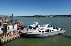q2q-ferry