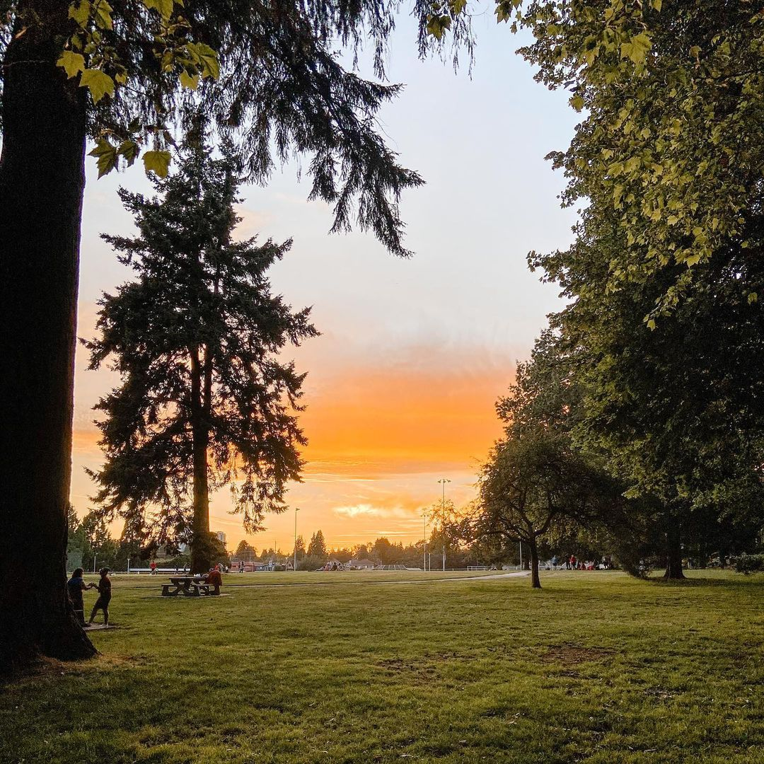 Sunset in Moody park