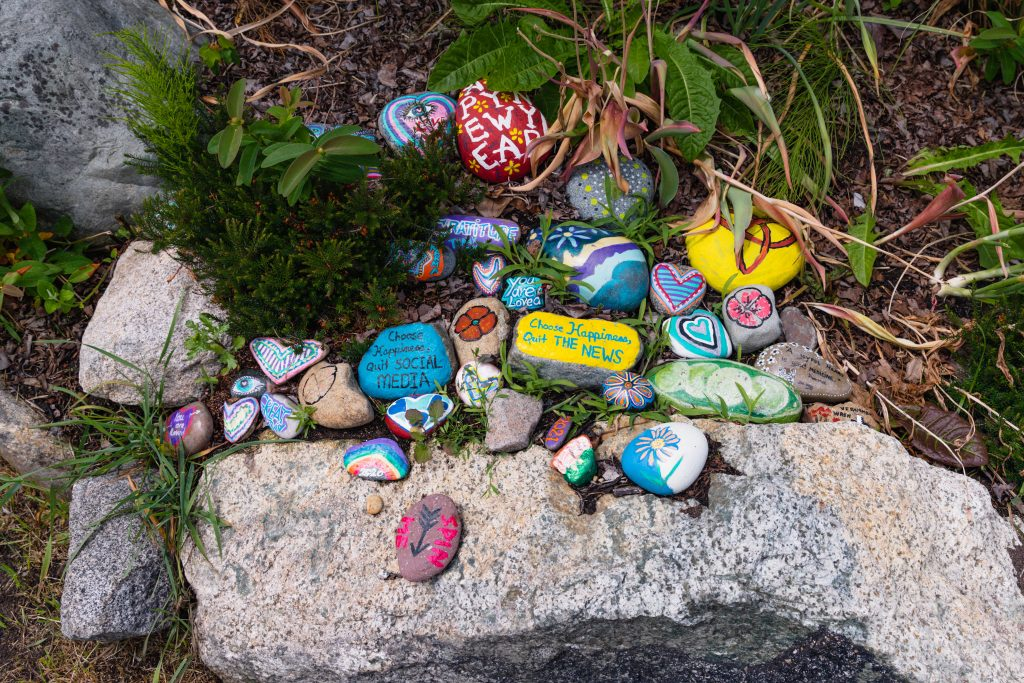 Painted rocks amongst plants and rocks.