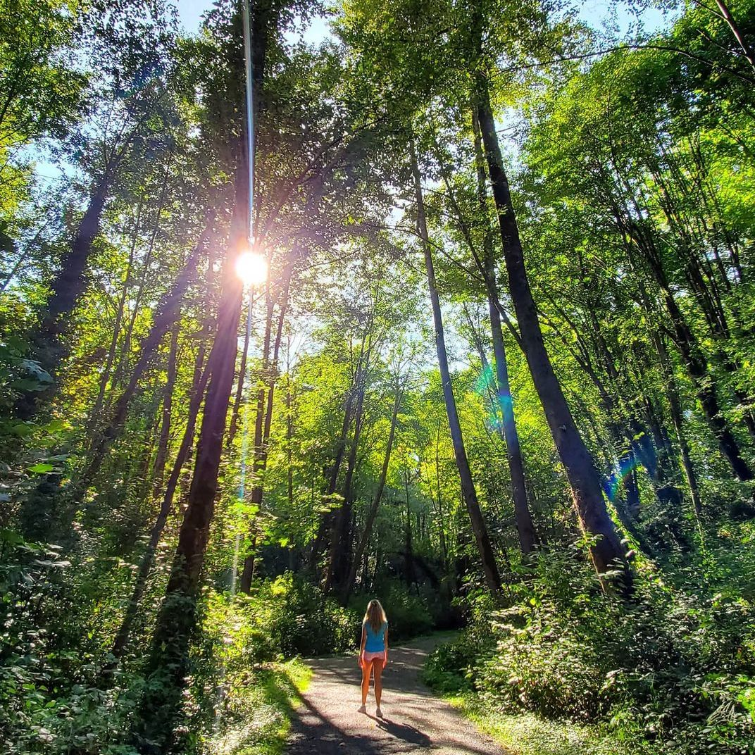 Person walking on shaded path with sun peaking through trees.